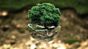 Törékeny természeti egyensúly illsuztráció